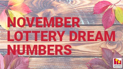November Lottery Dream Numbers